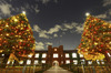 【クリスマス】立教大学でクリスマスツリー点灯式 12月4日