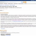 Microsoft Security Advisory (981169)