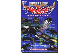 昆虫たちが戦う「世界最強虫王決定戦」シリーズ一挙公開!