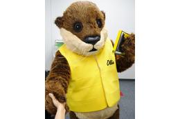 OtterBoxのキャラクター「Ollie」が編集部に!