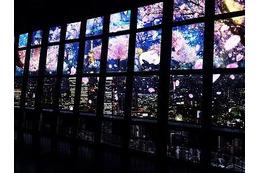 """プロジェクションマッピングで""""夜桜""""見物、東京タワーで開催"""