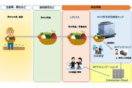 「食材の産地」を推定する技術、NTTとシダックスが実験