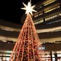 広場にはクリスマスツリー風イルミネ