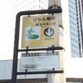 【東日本大震災特別コラム001】混同しやすい「避難場所」と「避難所」の違いとは 画像