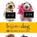 bijin-dog