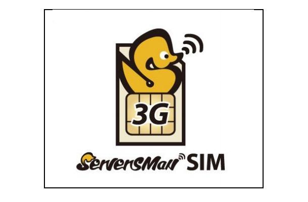 「ServersMan SIM 3G 100」ロゴ