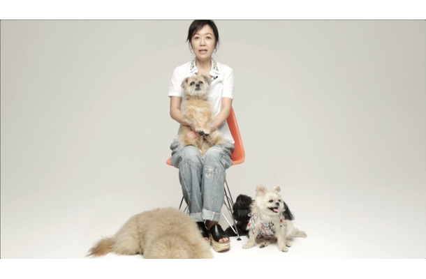 浅田美代子「彼らは家族の一員と呼ばれてました」。ペットの命の大切さ訴える