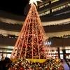 広場にはクリスマスツリー風イルミネの画像