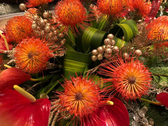 花を接写。花びらは葉のディティールにも迫れる