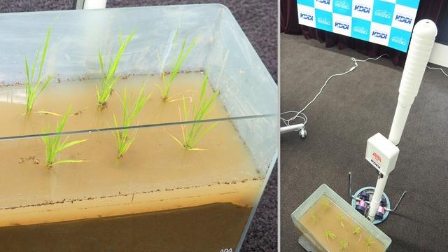 記者説明会の会場に展示されていたサンプル。この1m70cmほどの白いポールが水位センサーだ
