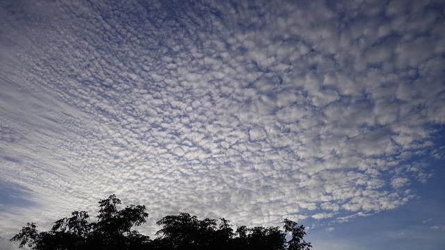 夕方の空。流れる雲の様子が美しくて思わずシャッターを押した