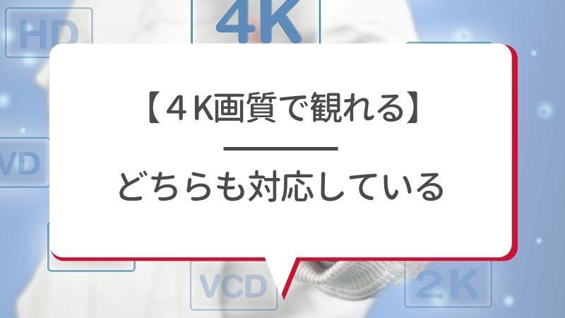 【4K画質で観れる】dtvもAmazonプライム・ビデオもどちらも対応している