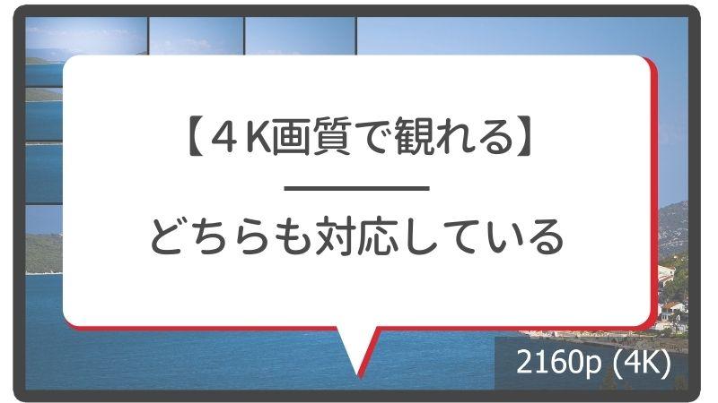 【4K画質で観れる】NetflixもAmazonプライム・ビデオもどちらも対応している