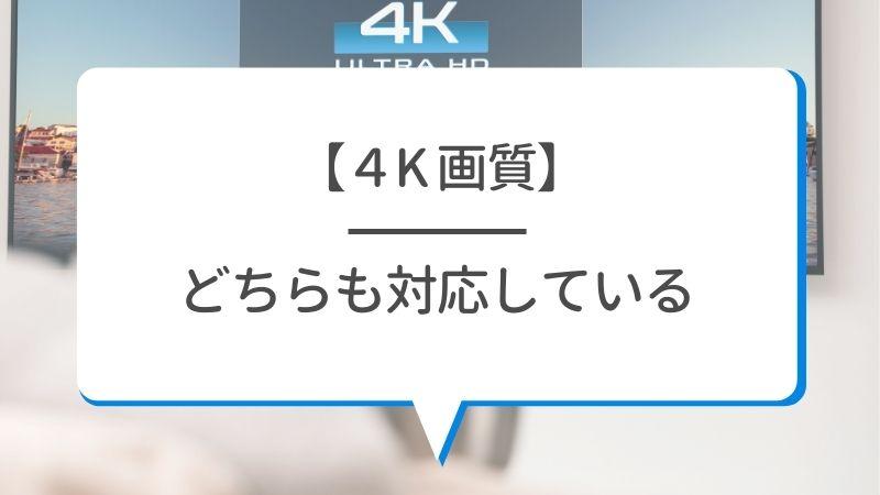 【4K画質】U-NEXTもNetflixもどちらも対応している