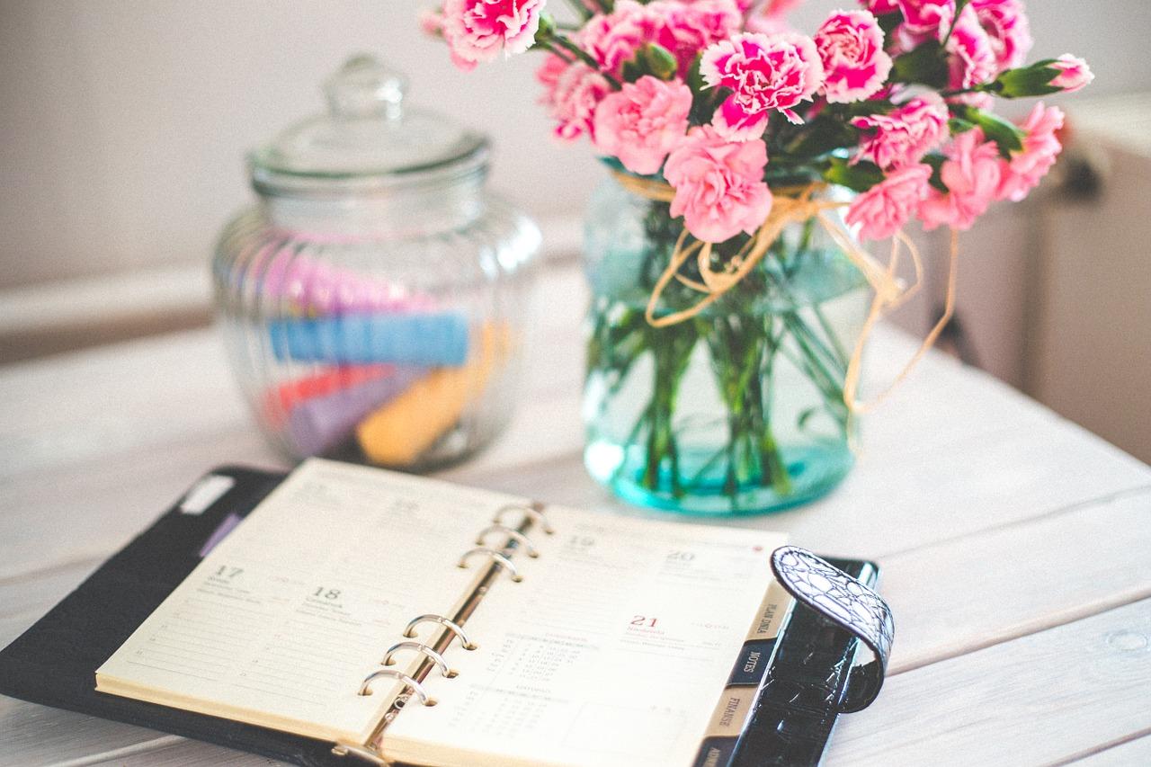 ワードプレスは日記におすすめできない?テーマはどれが良い?長年の利用者が回答