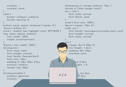 programmer 1653351 640 530x368 - webcode(ウェブコード)とは?